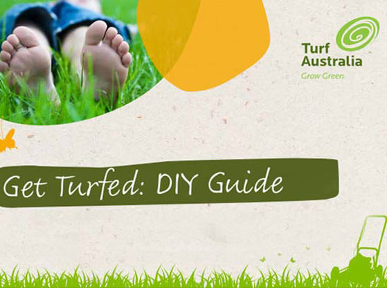 lawncare guide