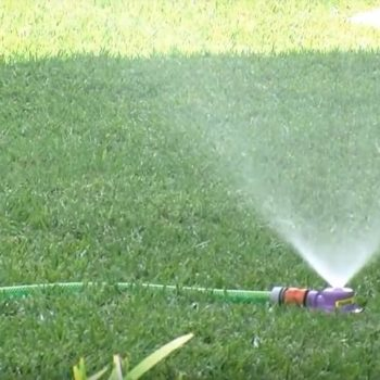 Watering And Fertilising Tips For Your Lawn