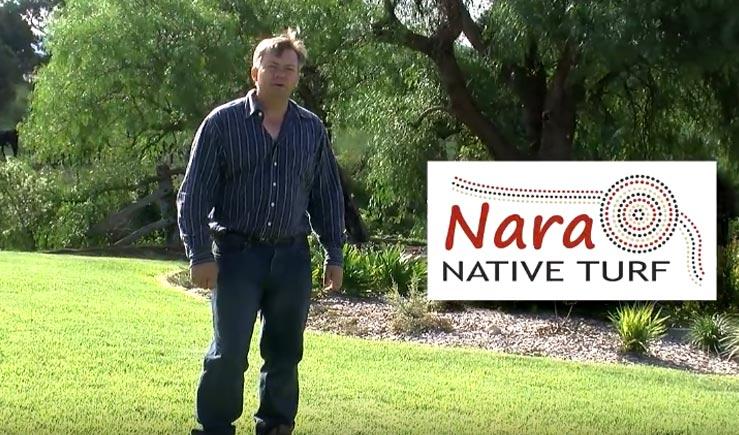 nara native turf