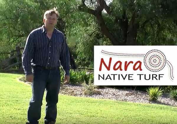 Nara-The-True-Australian-Lawn