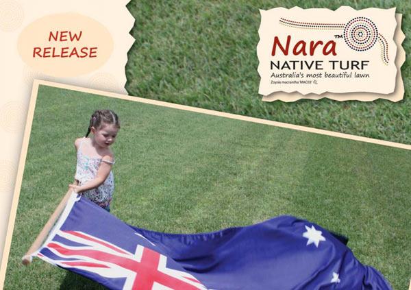 Zoysia Nara Turf brochure