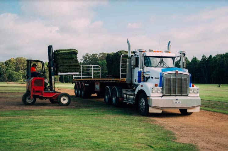 Sunshine Coast Turf Supplier